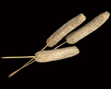 Maize Comb on Bamboo Stem
