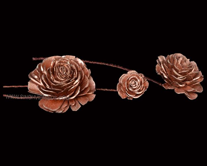 Sola Skin Beauty Rose on TST German Copper