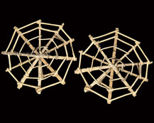 Lata Spider