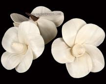 Sola Honey Comb Pure Flower