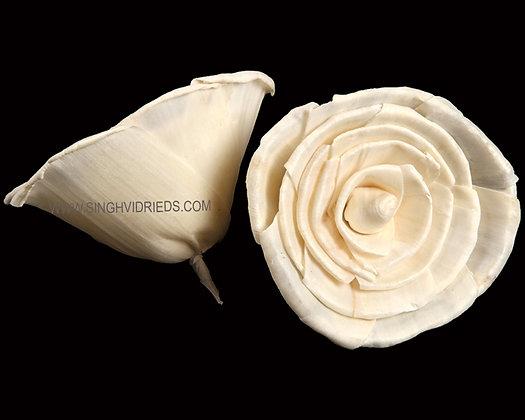 Sola Rose Flower