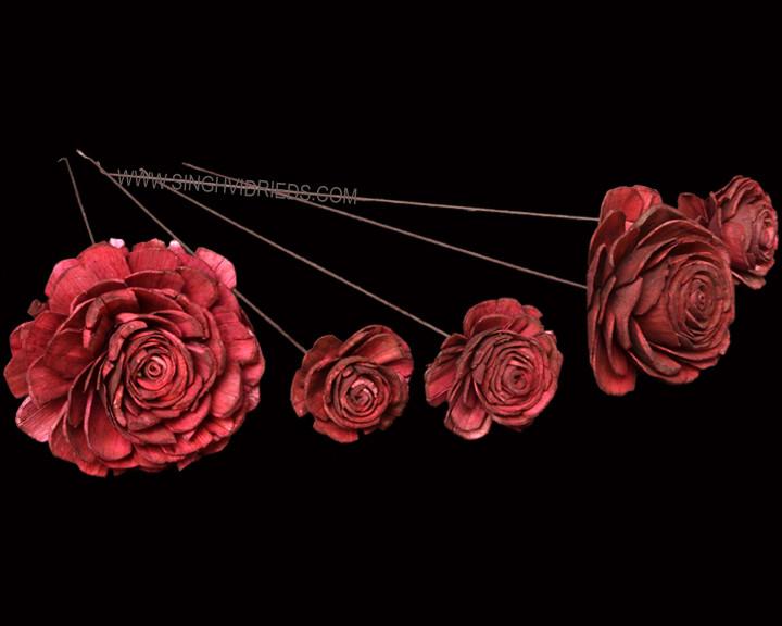 Sola Skin Beauty Rose on WST Burgundy.jp