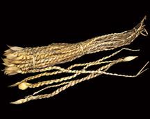 Palm Snake