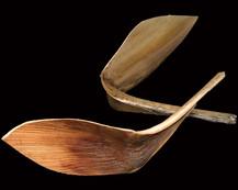 Shoe Horn Short Stem Natural