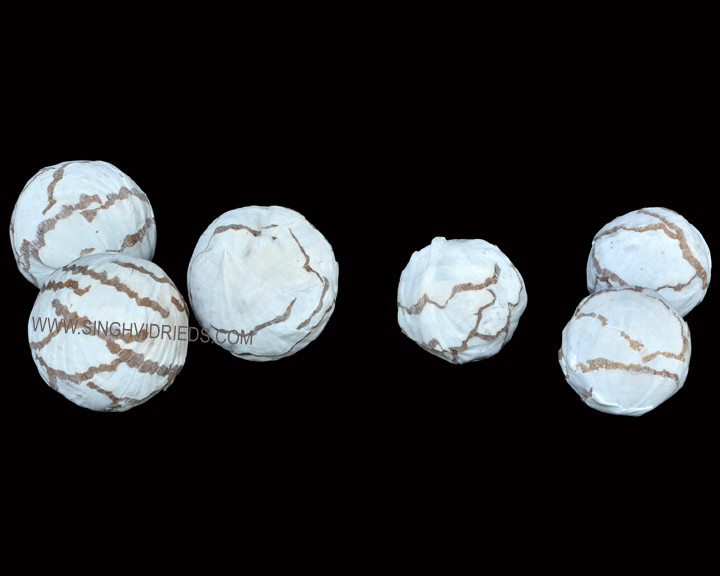 Sola Cabbage Ball Antique White