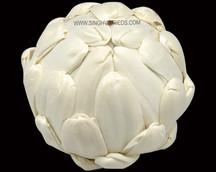 Sola Lotus Ball
