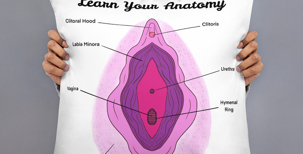 Learn Your Anatomy Pillow