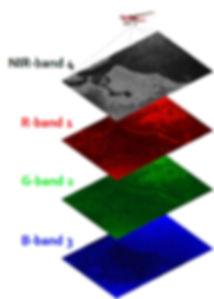 imagen servicios infrarrojo 4 bandas.jpg
