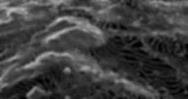 imagen productos curvas 02.jpg