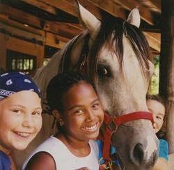 Jasper and friends at Top Bar Ranch