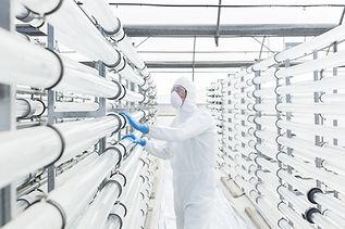 Ensyos de higiene industrial