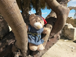 Travels with my Freed Bear: Kourion