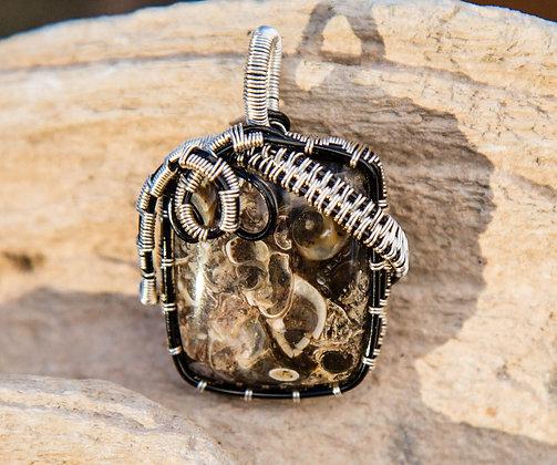 Spectacular Premium Turritella Pendant