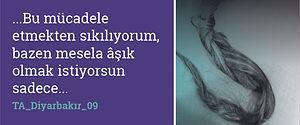 TA_Diyarbakır_09  .jpg