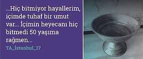 TA_İstanbul_17_BUTON-12.jpg