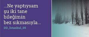 DD_İstanbul_05BUTON-17.jpg