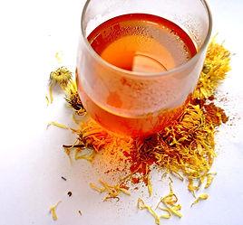 Organic Gold Tea, Turmeric Tea, Hippocrateas