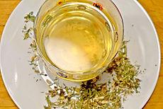 Hippocrateas, organic tea, nonGMO tea, Chicago tea, tea Chicago