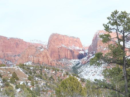 A Winter Wander- Kolob Canyons