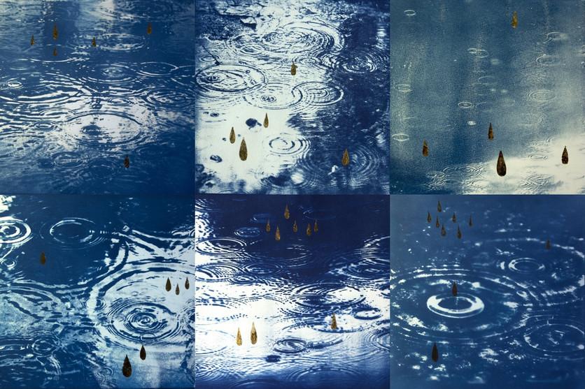Monsoon Rain 1-6