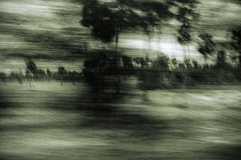 19:21:26 (Georg Jansen, 2011)