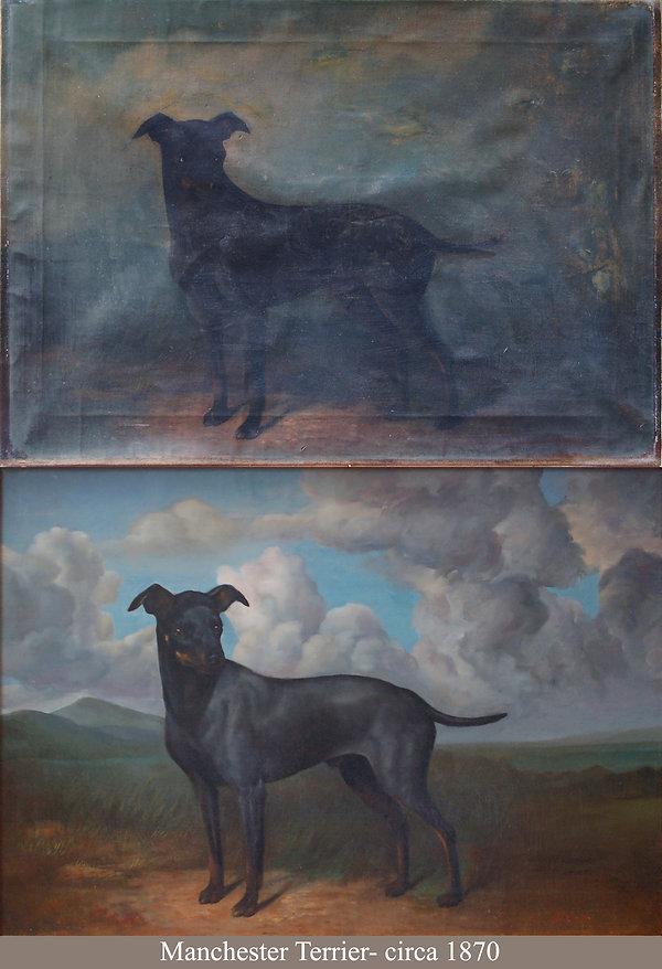 McKesey Terrier B4 & FIN.jpg