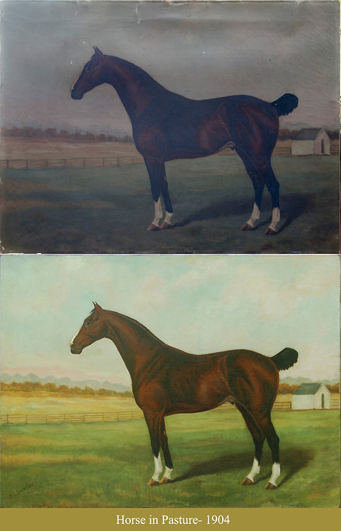 Fadely- Horse in Pasture- B4 & FIN.jpg