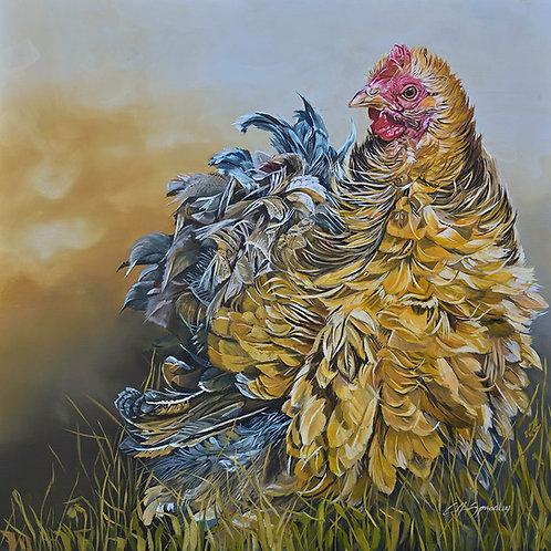 Cotswold Hen
