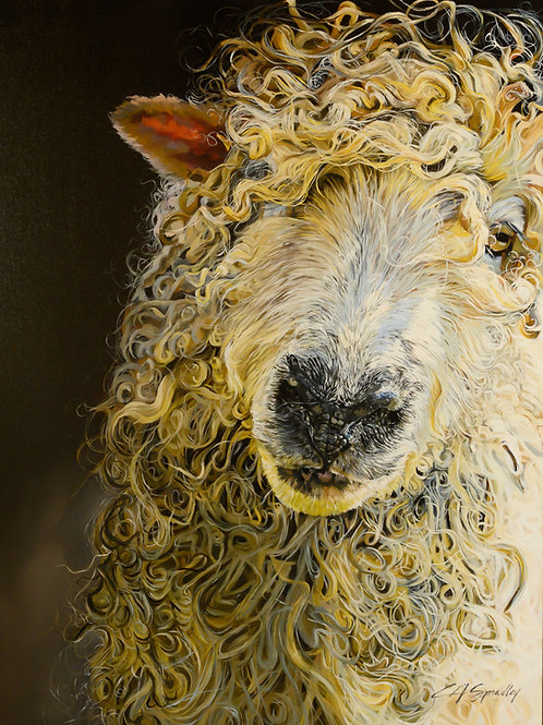 """The Cotswolds Sheep"" ORIGINAL"