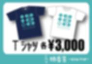 akane_price_POP3_Tshirt.jpg