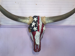 American Steer