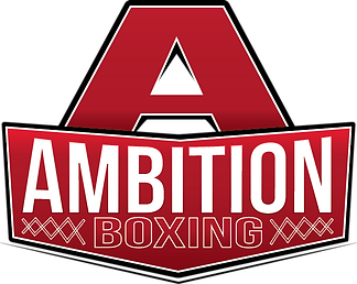 ambition_logo_color_small.png