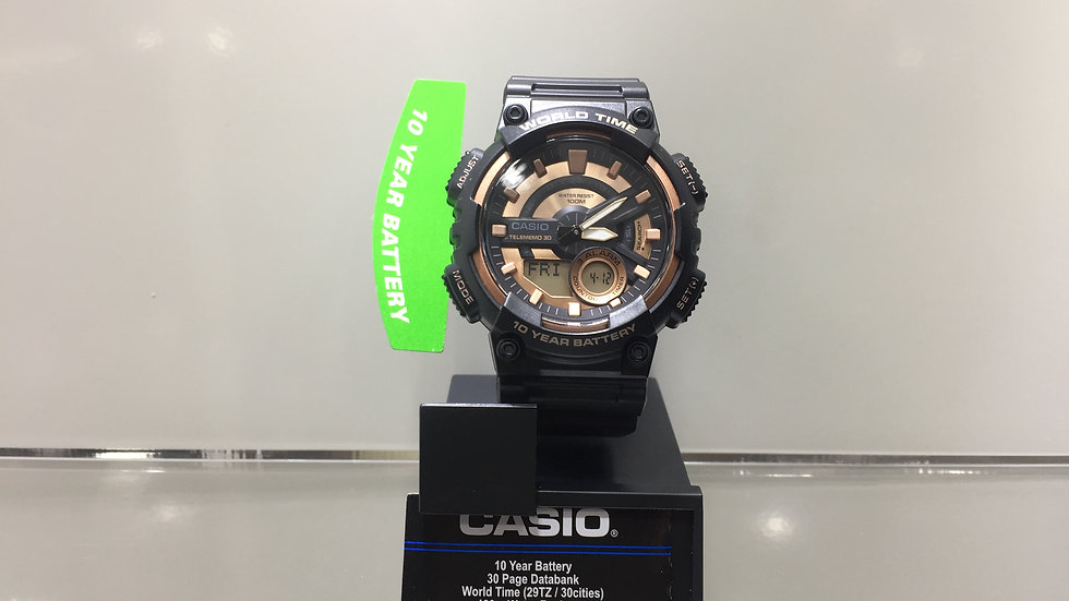 Casio 10 Year Battery 30 Page Databank World Time (29TZ / 30 cites) 100m Water R