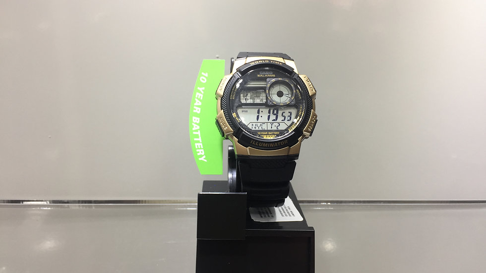 World Time (31TZ / 48 cities) 5 Alarms 100m Water Resistant.