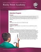 Attention Program_Page_1.jpg