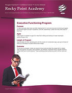 Executive Functioning Program_Page_1.jpg
