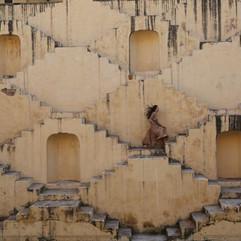 Bodhi Wanderlust