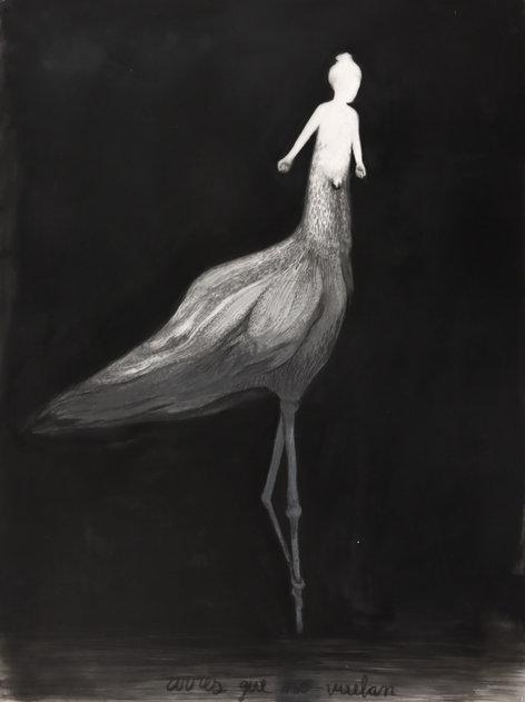 Aves que (no) vuelan, lápiz y óleo sobre papel mylar, 61x45,5cm,2020