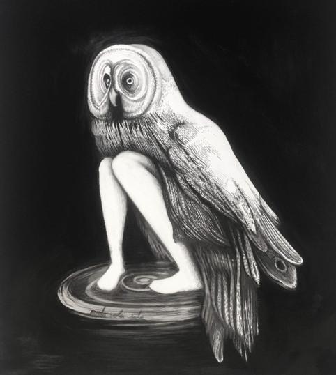 Puedo volar sola, lapiz y óleo sobre papel mylar, 43x36cm,2020