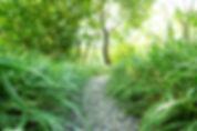 Gartenbauunternehmen Meggen Udligenswil Ebikon Küssnacht Buchrain Inwil Emmen Malters Reussbühl