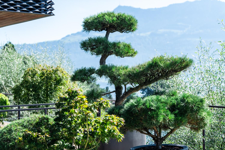 Gardener Meggen Malters Kriens
