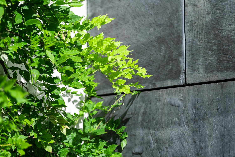 Gartenbau Meggen Merlischachen Zug