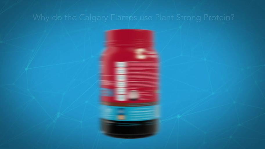 TDF Sports Calgary Flames 2lb Animation