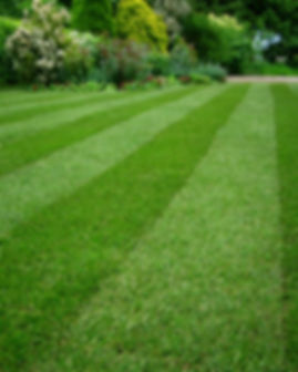 Professional-Landscaping-Services-Mowing