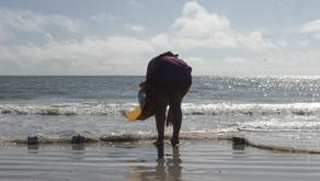 Live: Projeto oferece oficinas de cinema para educadores do Pará