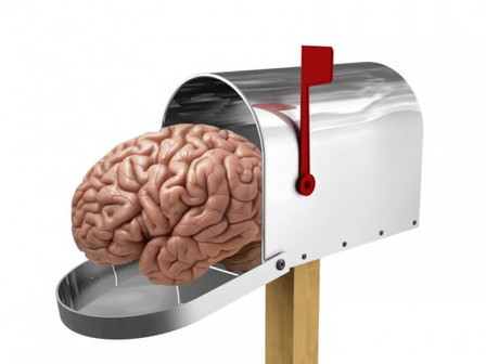 Neuromarketing: Impresso x Digital surpreende no resultado