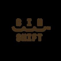 BinShift Logo.png