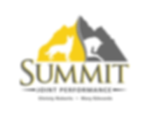 SummitLogo-02 with names.png
