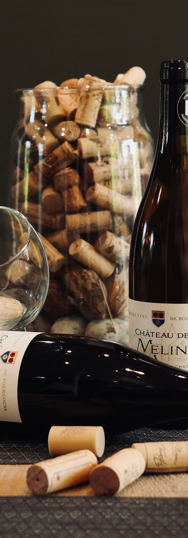 Vins de Bourgogne Bio Château Melin