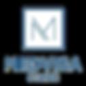 Medvisa Logo.png